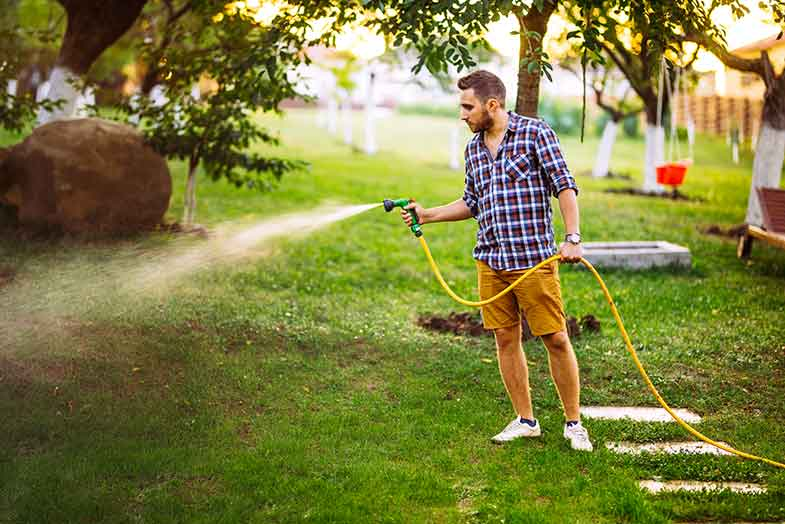 guy-watering-fort-collins-lawn