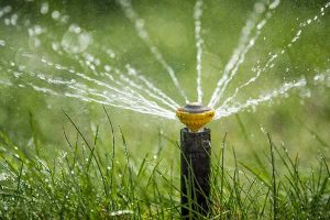 Professional sprinkler installation in fort collins, CO
