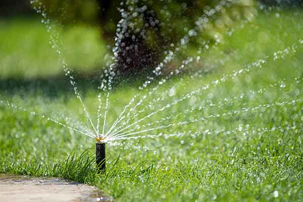 sprinkler-watering-lawn-using-timer