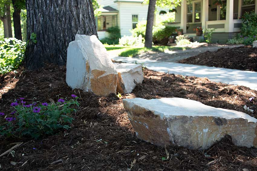 Rocks mulch and flowers near large tree in front yard planted by landscapers