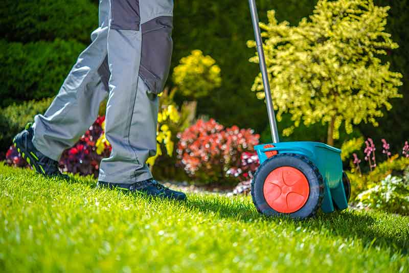 Fertilizing the lawn with soil nutrients for energy