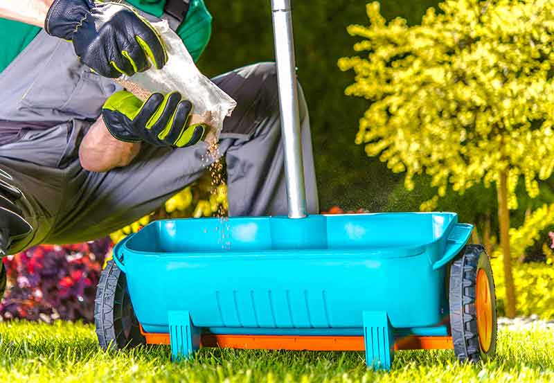 Prepare the lawn for laying turf and sod installation