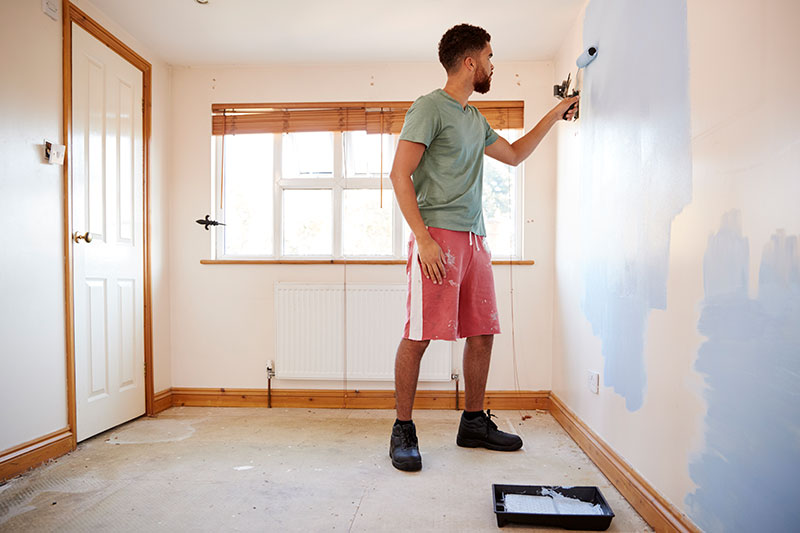 diy painter in fort collins co