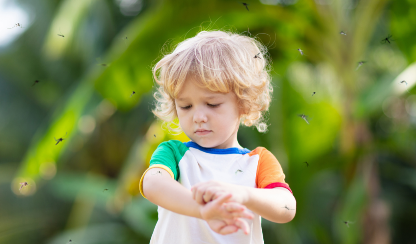 child with mosquito problem